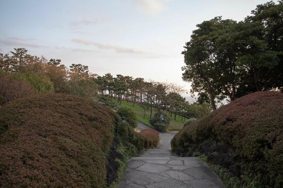 The Shilla Jeju: the garden