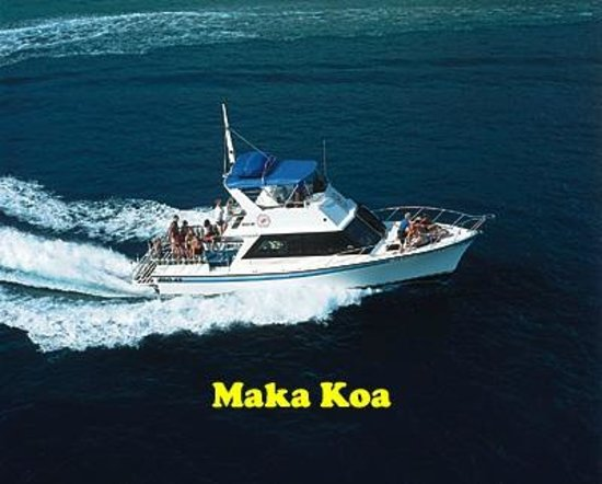 Maui dive shop kihei hi top tips before you go with for Maui fishing store