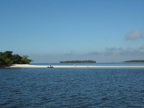 Gulf Coast Visitor Center: A sandbar beach