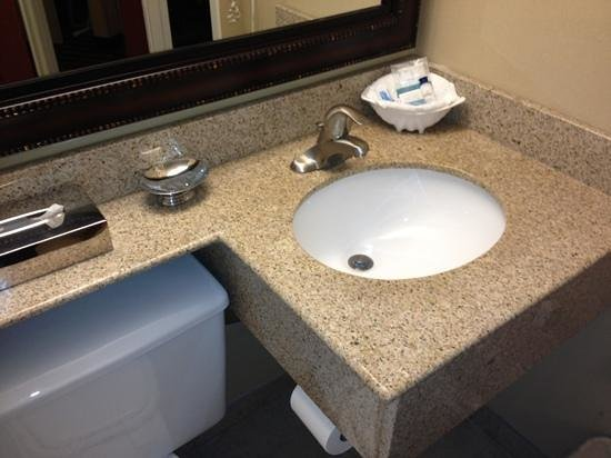 Best Western Fort Washington Inn : sink