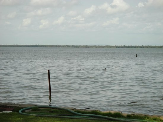 The Park on Vembanad Lake: Vemaband lake from Resort