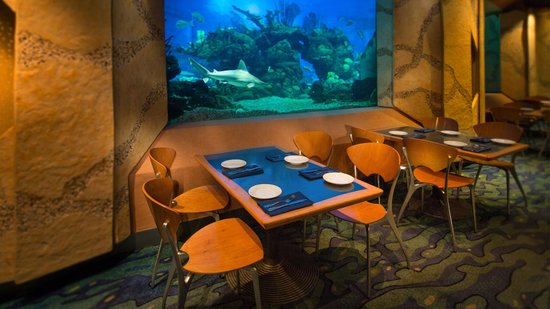 Reviews Of The Coral Reef Restaurant Epcot