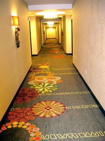 Embassy Suites by Hilton Houston Downtown : Corridor outside the room