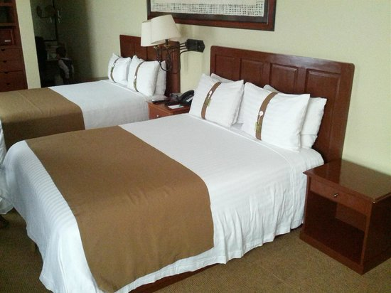 Holiday Inn Hotel & Suites Zona Rosa : Habitación Doble