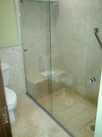 Holiday Inn Hotel & Suites Zona Rosa: Baño