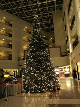 Sheraton Grand Krakow: Christmas tree in foyer