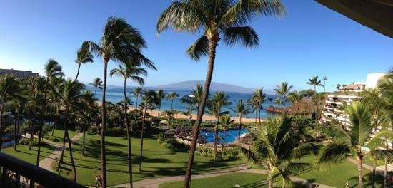 Sheraton Maui Resort & Spa : View of the grounds.