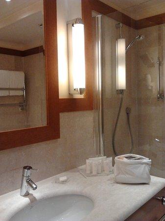 Starhotels Metropole: il bagno