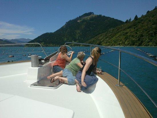 Greenshell Mussel Daily Cruise: Enjoying the sun