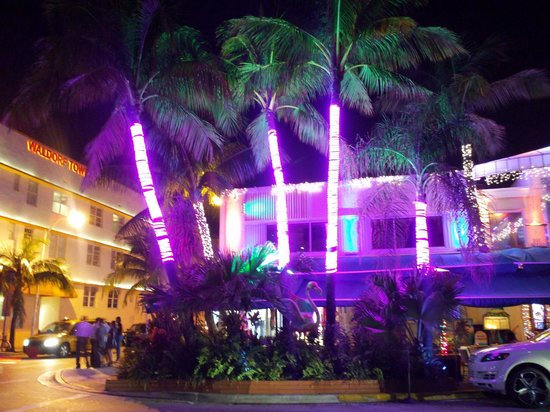 Beach Paradise Hotel: OCEAN DR. SOBE @ NIGHT