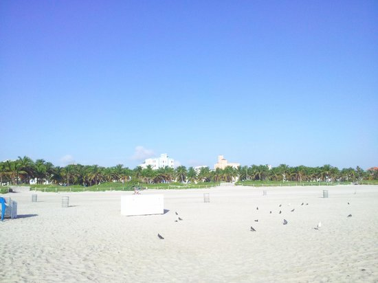 Beach Paradise Hotel: LUUMUS PARK BEACH ACROSS FROM HOTEL