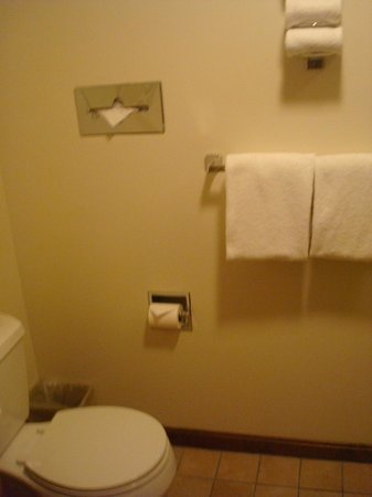 The Kancamagus Lodge: bathroom