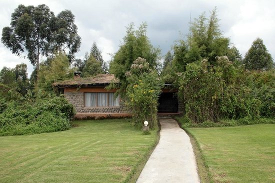 Mountain Gorilla View Lodge: Chalet 1