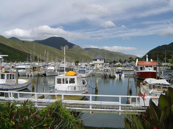 Pelorus Mail Boat: Havelock Marina