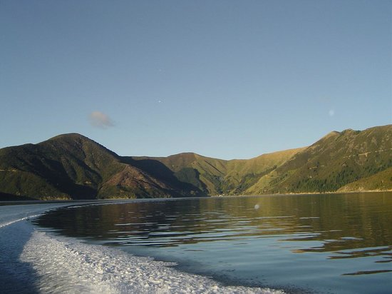 Pelorus Mail Boat: Pelorus waterways