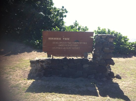 Kakahaia Beach Park 사진