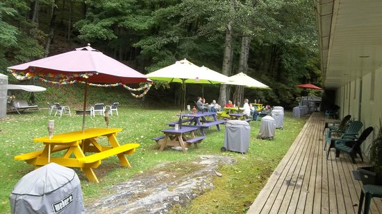 Starlite Motel: backyard recreation and picnic area