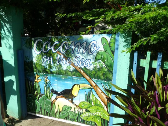 Cocomo on the Sea: The front gate to enter the B&B.