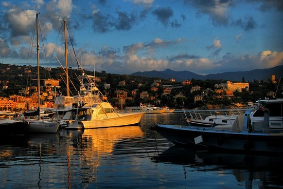Hotel Mediterraneo: in the S. Margherita Ligure
