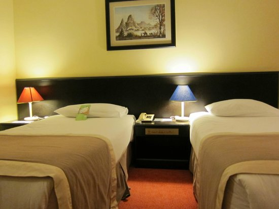 Dedeman Cappadocia Hotel: Decent and clean room
