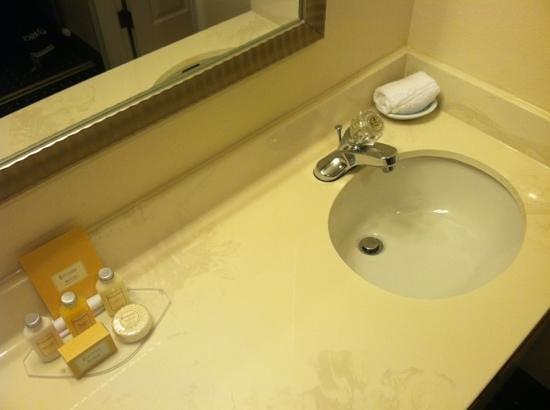 Sonesta ES Suites Dublin : Deep bathroom sink