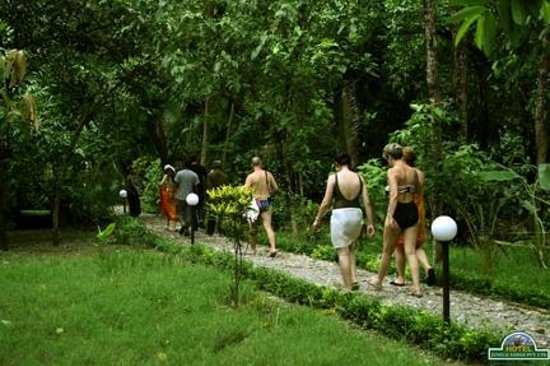 Hotel Jungle Lodge: Guest back from their programme