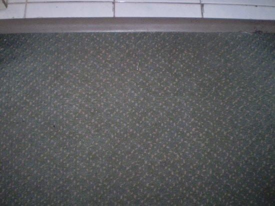 Aitue Hotel: alfombra desgastada en varias zonas.
