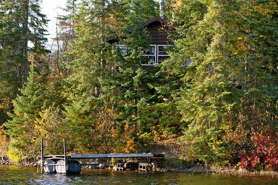 Hungry Jack Lodge & Campground: A view of the Wolf cabin from the lake