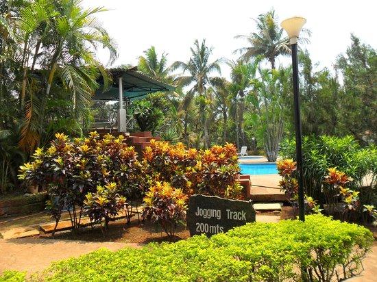 The Pagoda Resort: Green Walkabout