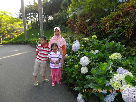Klub Bunga: lovely flowers in front of hotel