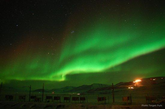 Svalbard Husky: Fantastic Aurora Borealis