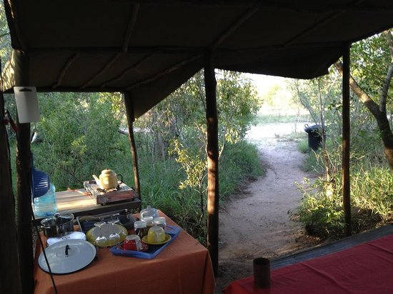 Calao Tented Camp: kitchen