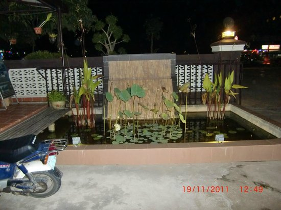 Zana House: The fish pond.