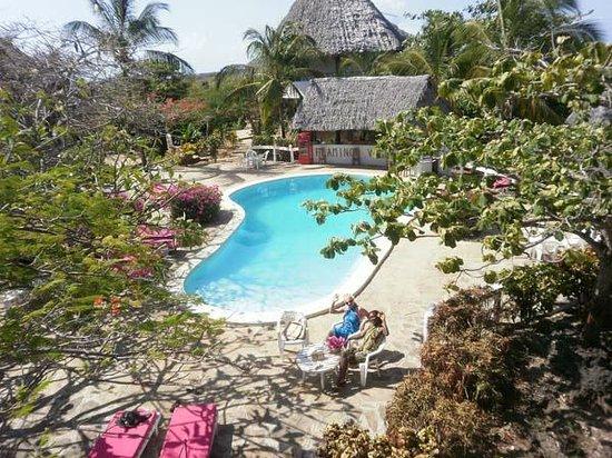 Flamingo Villas Club: Esterni