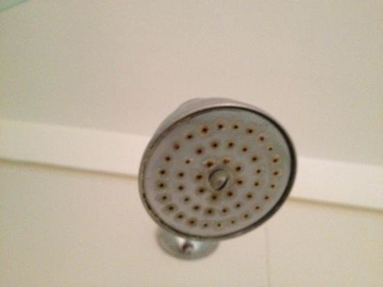 ‪تريب بوينس آيرس هوتل: rusty shower head