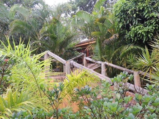 Kwalucia Private Safari Retreat: Blick auf die Veranda des Haupthauses