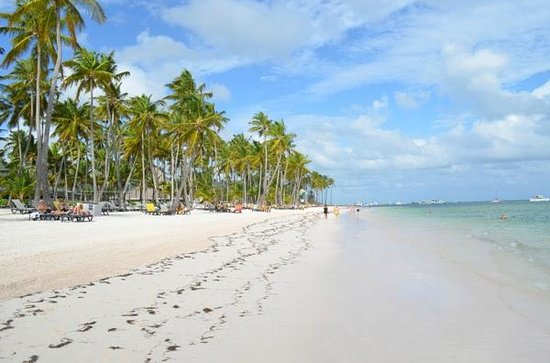Barcelo Bavaro Beach - Adults Only: excellent beach