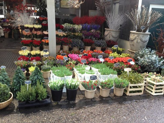 Flower Market / Bloemenmarkt: mercato dei fiori