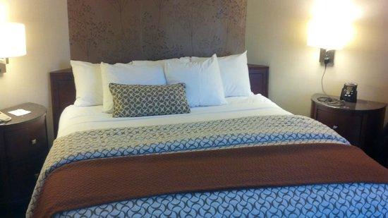 Embassy Suites by Hilton Austin - Downtown/Town Lake: Bedroom