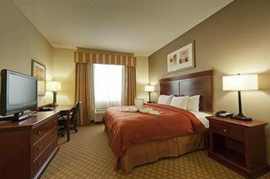 Country Inn & Suites by Radisson, Tampa East, FL : Single Business King