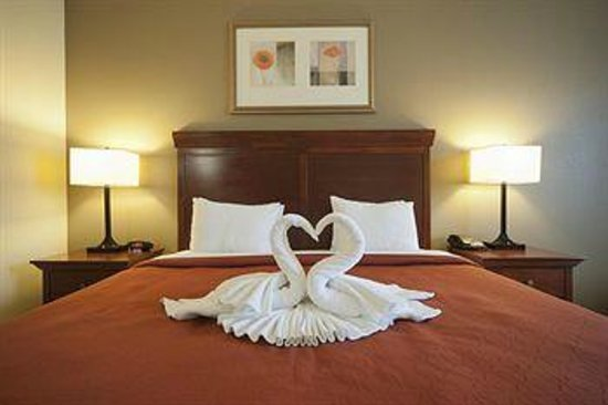 Country Inn & Suites by Radisson, Tampa East, FL: Single Business King Bed attention to detail :-)