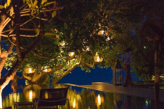 V Villas Hua Hin, MGallery by Sofitel: プールサイド