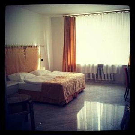 Hotel Leon D'Oro: Standard double room
