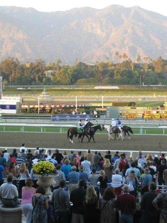 Santa Anita Race Park: Breeders' Cup Classic