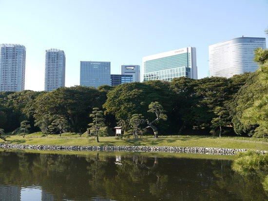Park Hotel Tokyo: View of the hotel from Hama Rikyu gardens