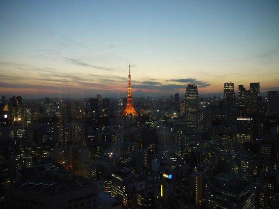Park Hotel Tokyo: Night view