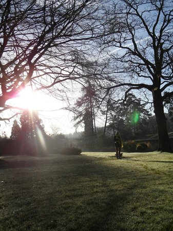 Friars Ford: Early morning view in the garden