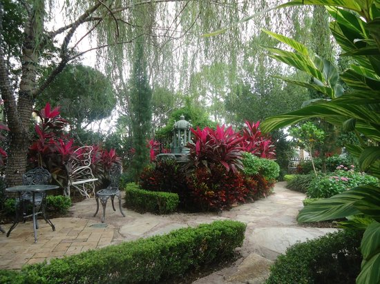Holy Land Experience: Reflective garden