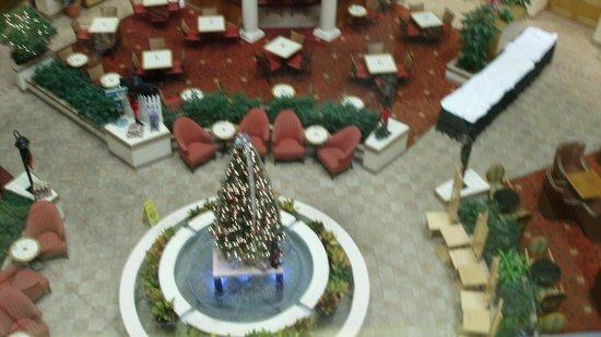 เอ็มบาสซี่ สวีทส์ โฮเต็ล ออแลนโด้ แอร์พอร์ต: view from the corrido to the main area from the elevator