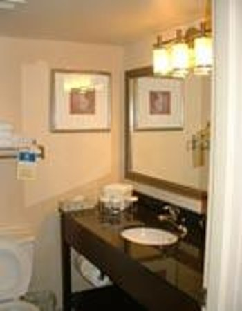 Holiday Inn Barrie Hotel & Conference Centre: Standard Bathroom